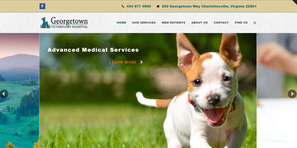 Georgetown Veterinary Hospital