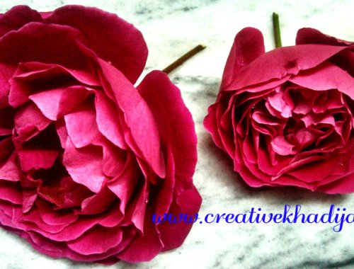 creative khadija photography