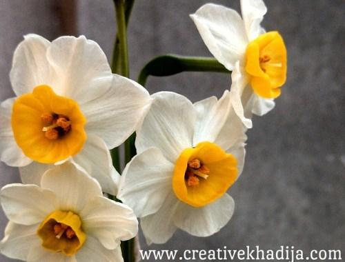 creative khadija instagram photography