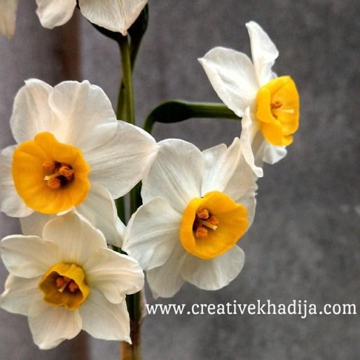 creative khadija instagram photography-8