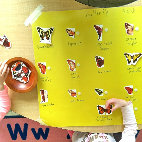 Kindergarten line of symmetry activities with hands-on and engaging centers. Find ideas and inspiration to practice symmetry with your students.
