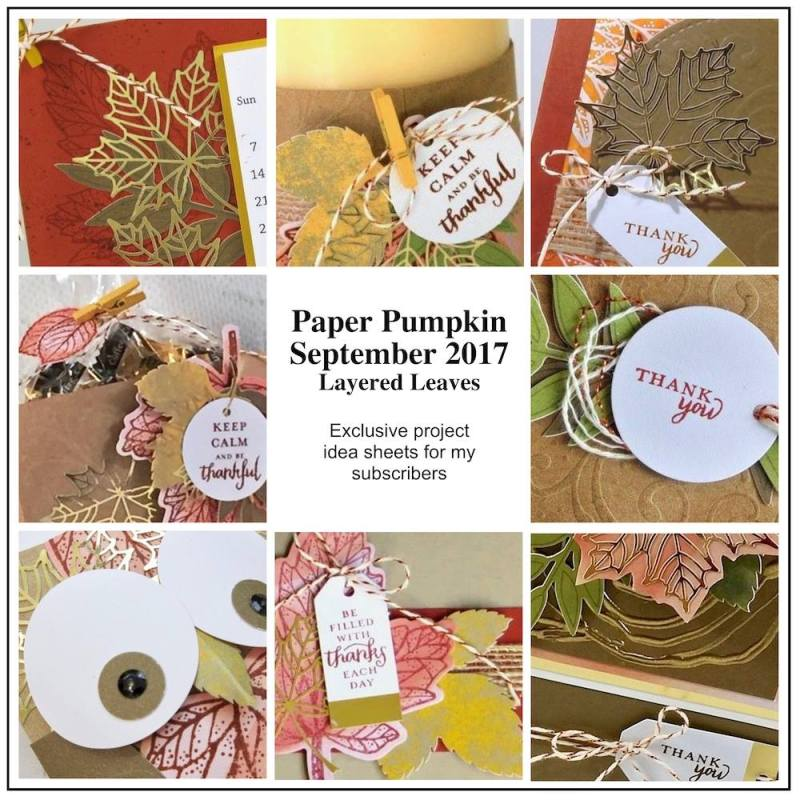 September 2017 Layered Leaves Paper Pumpkin Kit by wendy lee, stampin up, handmade cards, rubber stamps, stamping, kit, subscription