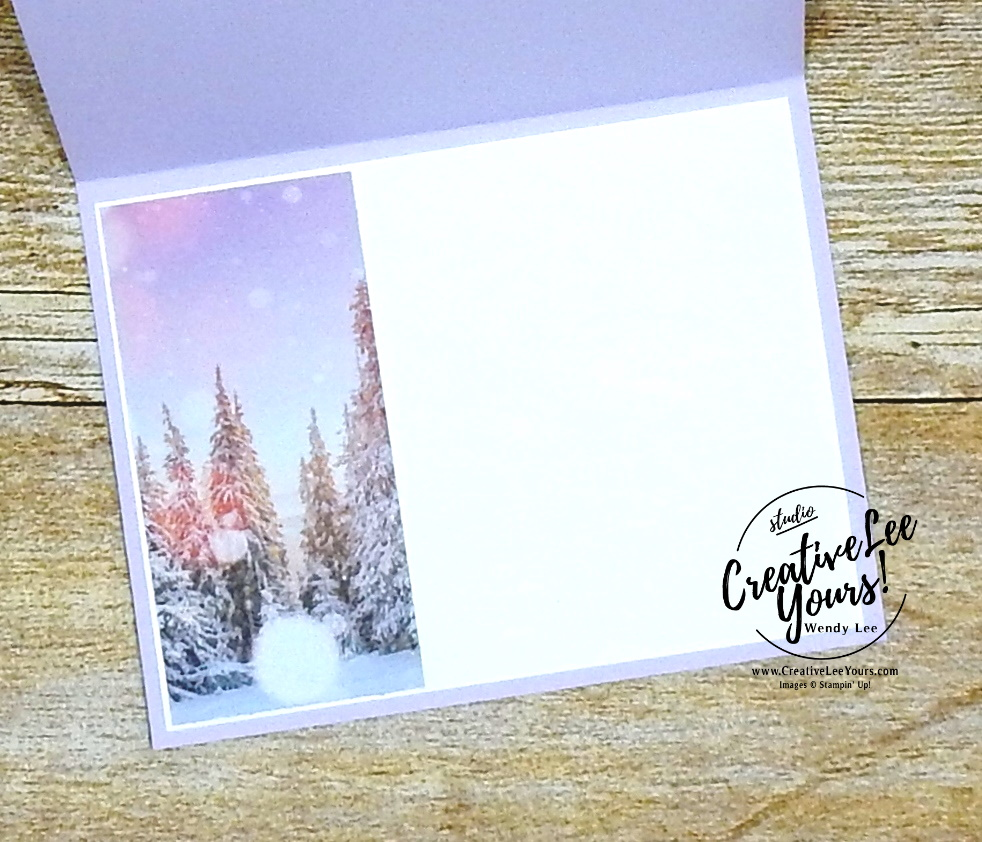 Embossed Evergreen Christmas by Wendy Lee, stampin up, stamping, SU, #creativeleeyours, creatively yours, creative-lee yours, #cardmaking, #handmadecard, #rubberstamps, #stamping, friend, celebration, congratulations, thank you, hello, birthday, holiday, Christmas, winter, trees, evergreen, stamping, DIY, paper crafts, #papercrafting , #papercraftingsupplies, #papercraftingisfun , Winter Woods stamp set, #makeacardsendacard ,#makeacardchangealife, stampers showcase blog hop, embossing, ,#tutorial ,#tutorials ,#technique ,#techniques