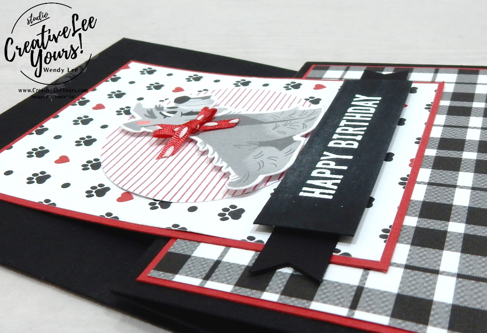 Pampered Pets Fun Fold Birthday by Wendy Lee, stampin Up, SU, #creativeleeyours, handmade card, friend, celebration , birthday, stamping, creatively yours, creative-lee yours, DIY, papercrafts, rubberstamps, #stampinupdemonstrator , #papercrafts , #papercraft , #papercrafting , #papercraftingsupplies, #papercraftingisfun, Facebook live, video , Pampered Pets stamp set, paper embossing, ,#funfoldcards ,#funfoldcard ,#tutorial ,#tutorials, vertical z fold, dog, cat