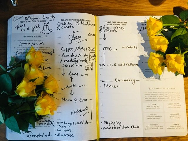 a photo of yellow roses with the high performance planner