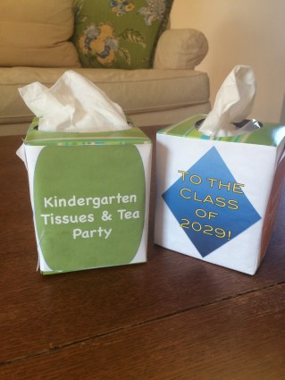 Kindergarten Tissue Boxes 1