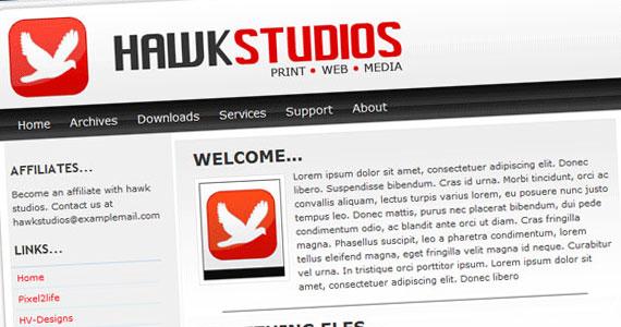hawk-studio