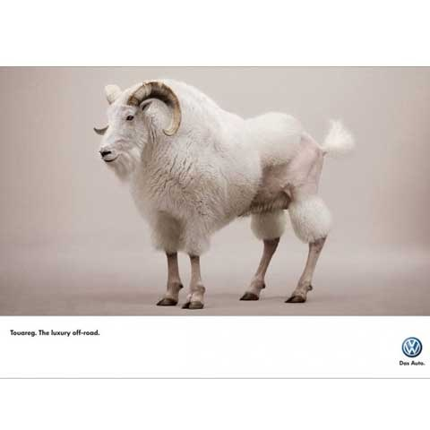 goatadvertisment 100 Most Funny and Creative Advertisement Designs
