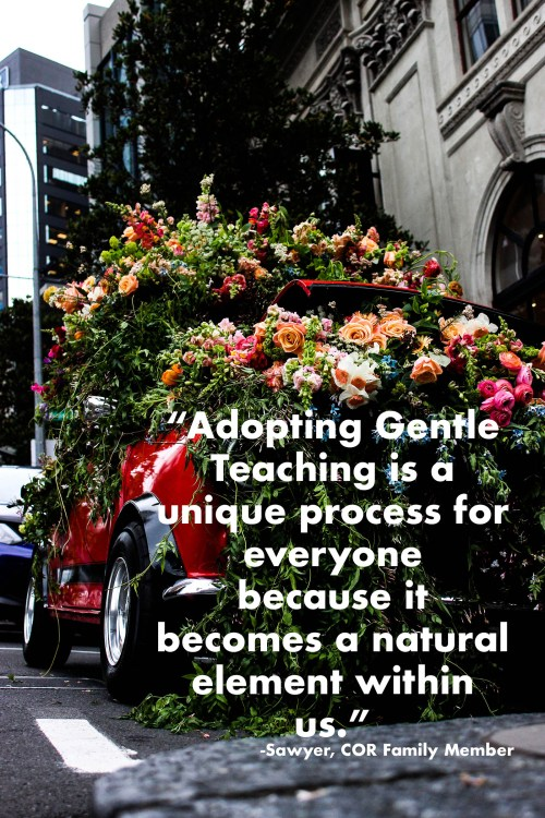 adopting gentle teaching