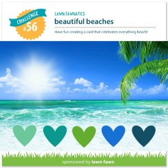 56challenge-beach-lawn-fawnatics.jpg