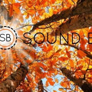 Fall into the Sound Beat