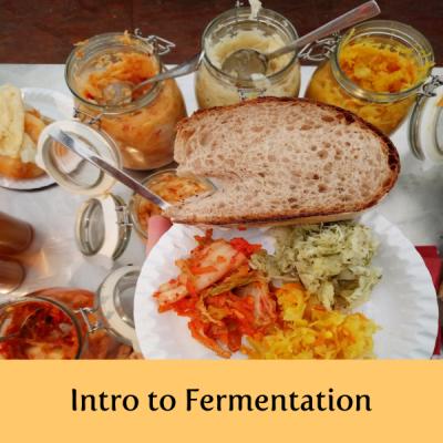 creative-switzerland-fermentation-cooking-classes-entrepreneurship-creativity-lucerne