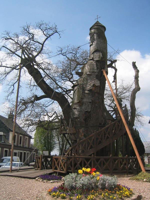 The Tree Chapel