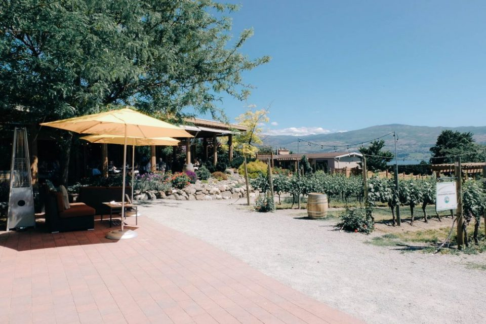Old Vines Restaurant at Quails Gate Winery in Kelowna