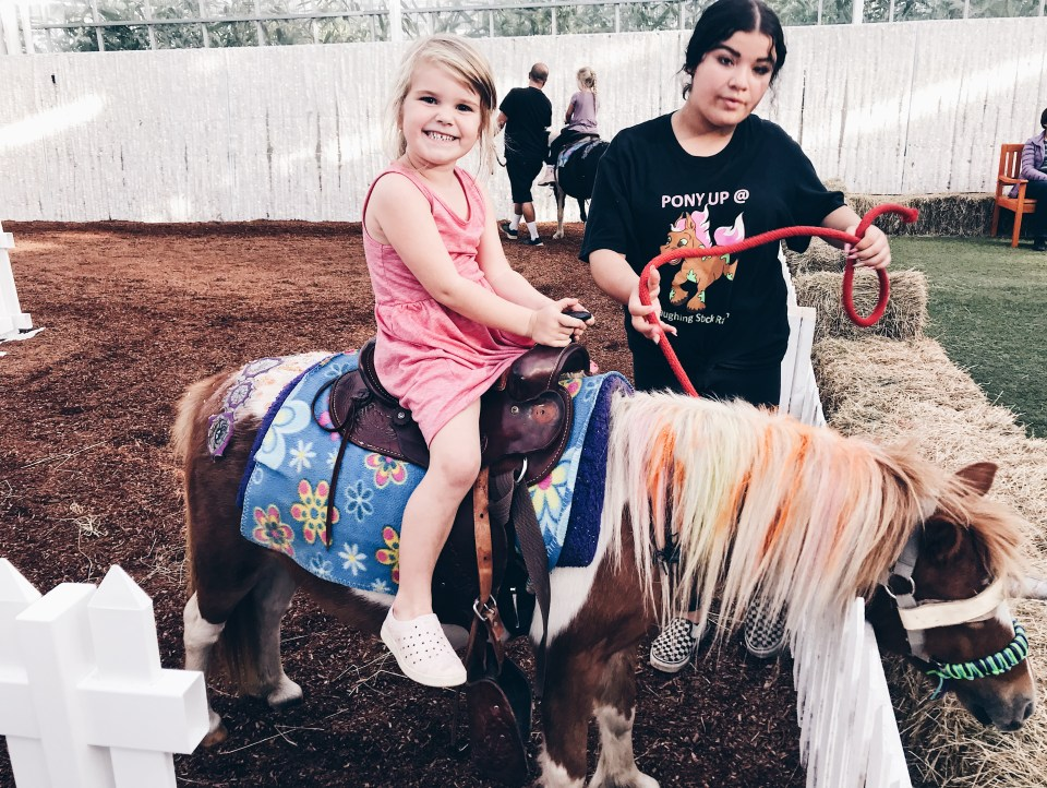 Glow Harvest in Langley | Indoor Pumpkin patch | Laughing Stock Ranch pony rides