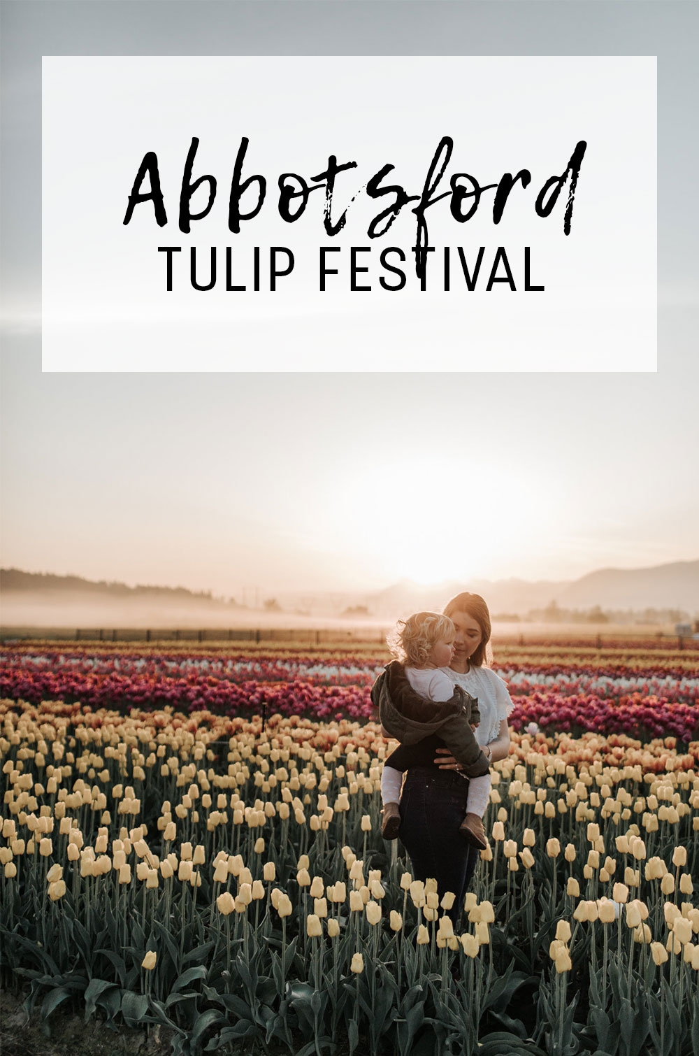 tickets for the abbotsford tulip festival