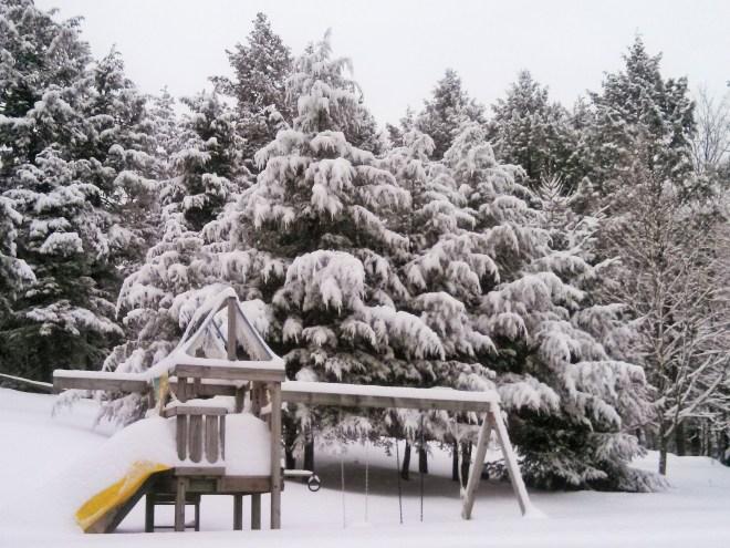 snowy-sunday-windsor-vermont-backyard