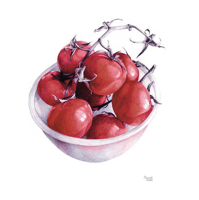 tomates paco marmol ilustracion