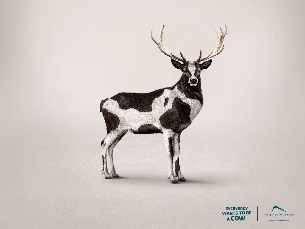 ciervo quiero ser una vaca