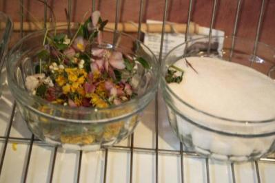 Drying flowers with silica