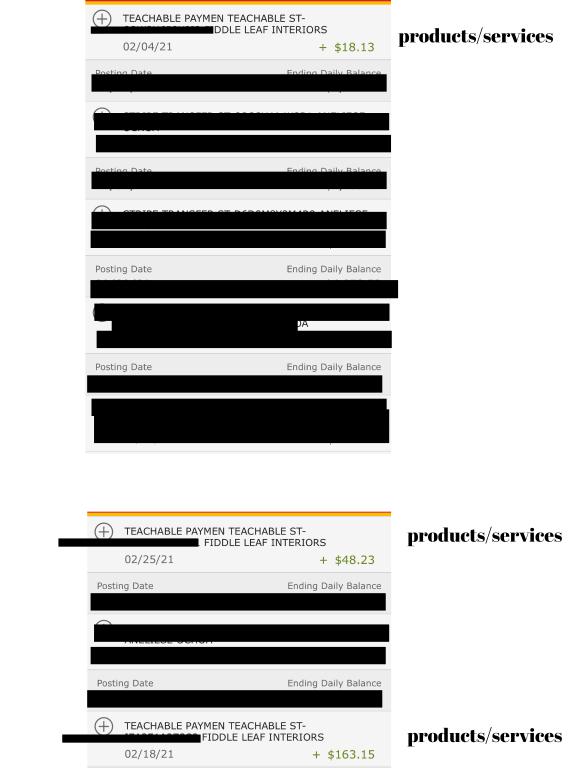 creator february income report