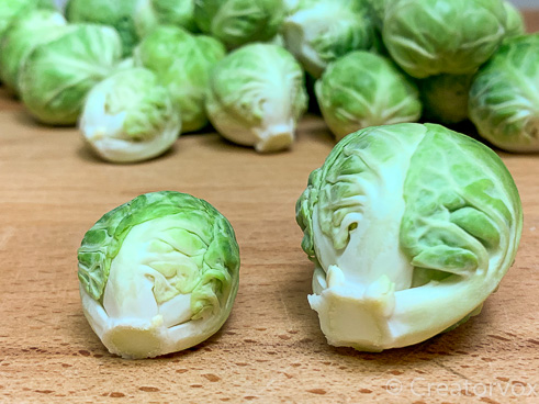 Size comparison of Brussels sprouts from the same bag. The one on the right is the size of a golf ball
