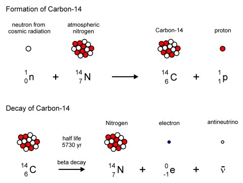 carbon 14 color