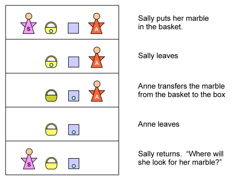 sally and anne color