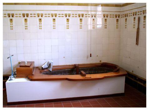 badnauheim bath
