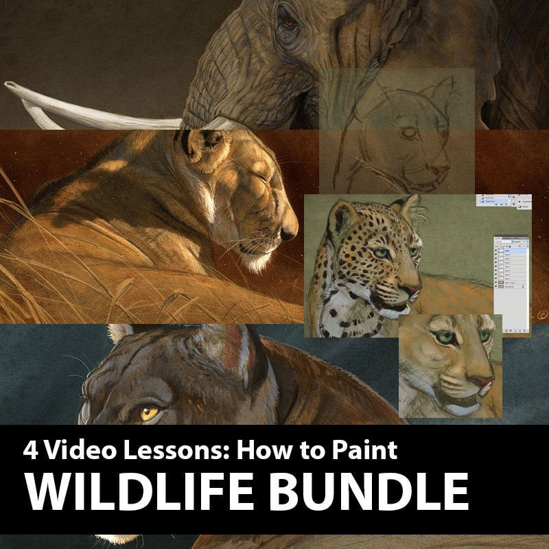 Wildlife Painting Bundle - The Art of Aaron Blaise