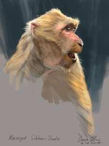 Aaron Blaise Animal Art Money Sketch