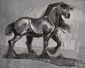how to sketch horses