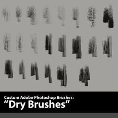 ON SALE! Photoshop Brushes & Texture Sets - The Art of Aaron Blaise