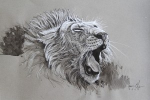 Aaron Blaise Lion Yawn ink Lesson