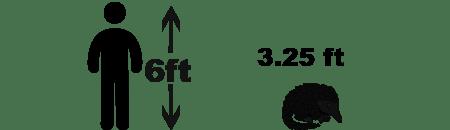 pangolin size comparison