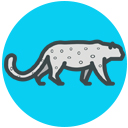 snow leopard point icon