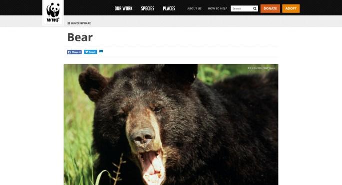 WWF Bear screenshot