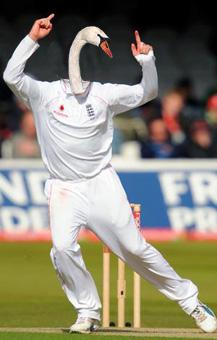 What if Graeme Swann was a swan?