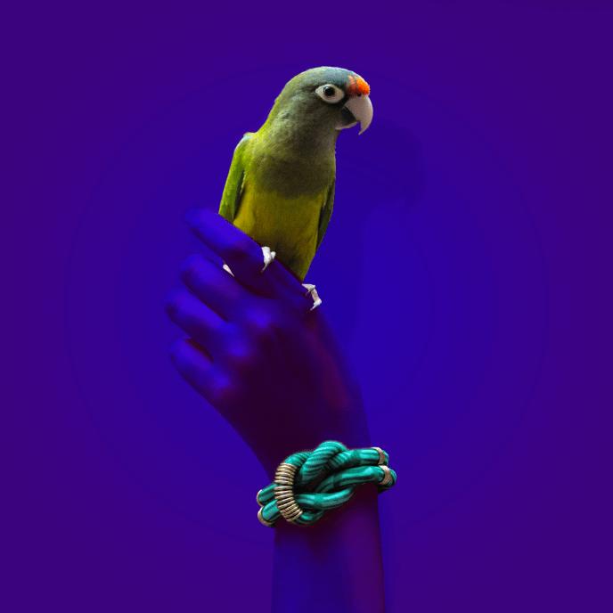 creatyum-valkala-07