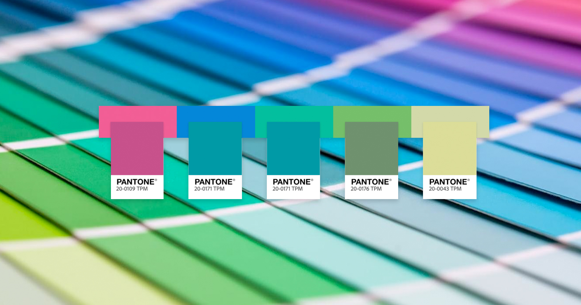 Temas de colores Pantone por Adobe Color