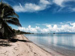 A Beachgoers Paradise: Vieques, Puerto Rico Travel Guide