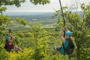 Things to do in Blue Mountain
