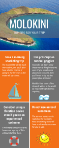 Molokini Crater Snorkeling Tips Infographic