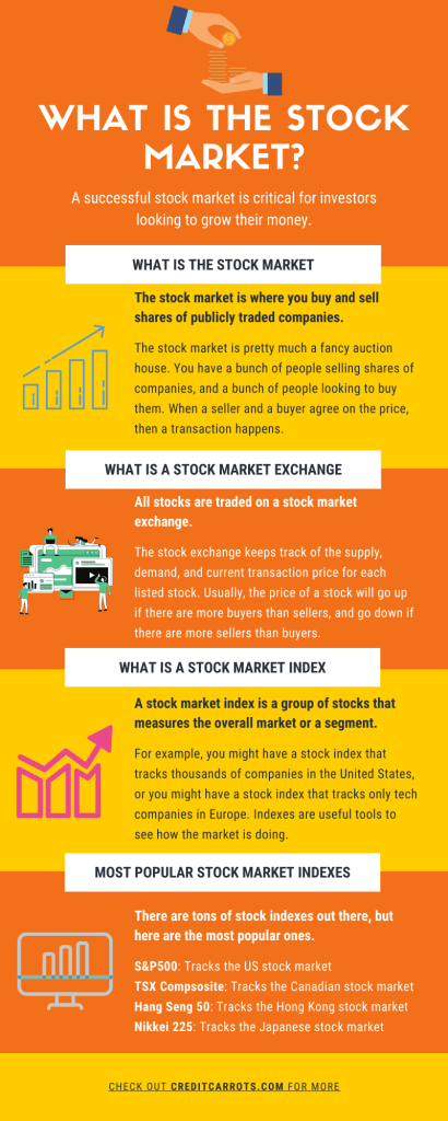 What is the Stock Market Infographic