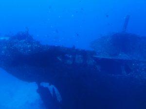 Atlantis Submarine Waikiki Plane Wreck 2 Hawaii