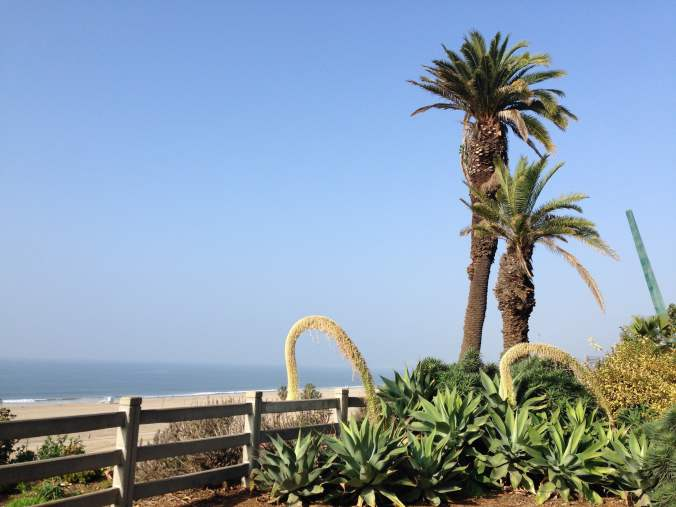 Palisades Park Overlooking Ocean - Santa Monica