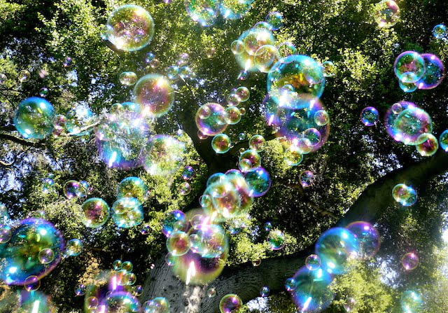 Soap Bubbles in Air with Trees