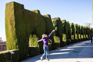 The enormous sculpted topiary walls of the Alhambra