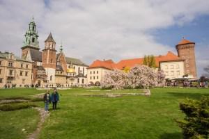 Day 4 Poland Wawel and Kazimirez-2