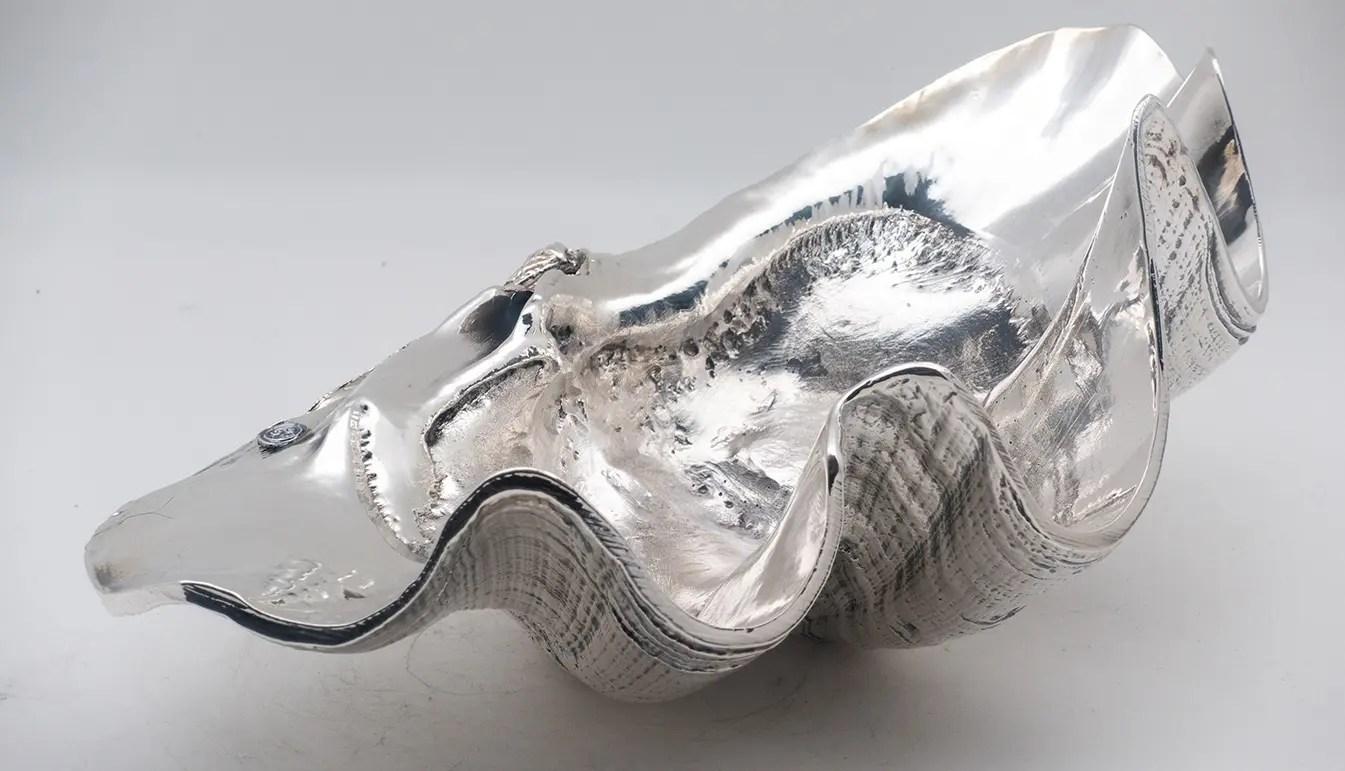 Silver Coated Tridacna